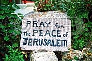 Jerusalem Garden Tomb 012