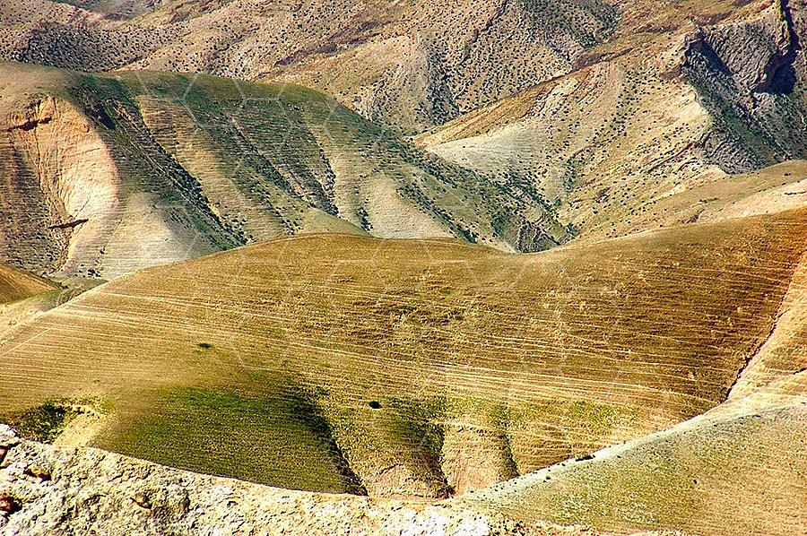 Judean Desert 025