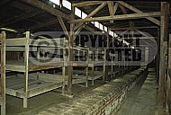 Birkenau Camp Barracks 0019
