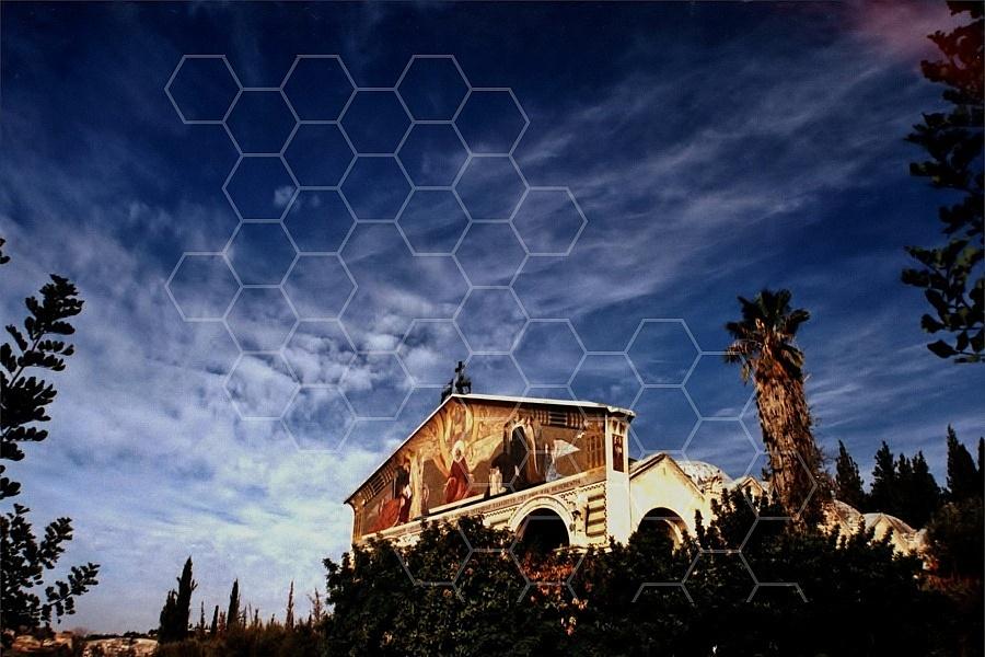 Jerusalem Gethsemani 0001