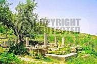 Gush Halav Synagogue 003