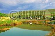 Jordan River 009