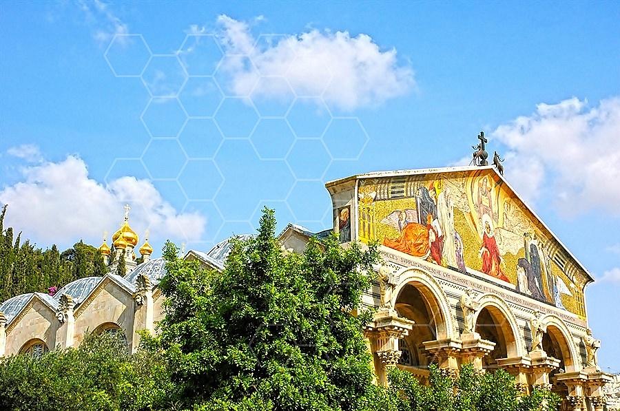 Jerusalem Gethsemani 004