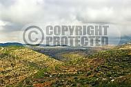 Judean Hills 007