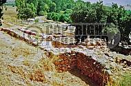 Tel Dan City Wall 005