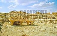 Tel Arad Ruins 001