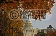 Washington DC US Capital 0007