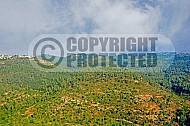 Judean Hills 014