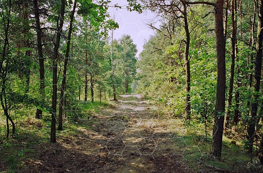 Belzec Camp Gate 0006