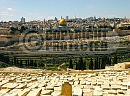 Jerusalem Old City View From Mt Of Olives 035