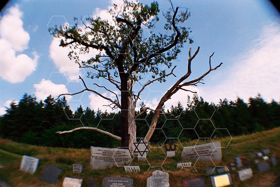 Gross-Rosen Memorial 0006