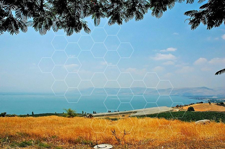 Sea Of Galilee 014