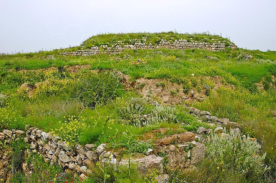Tel Lachish 003