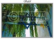 Safed Kabbalah 021