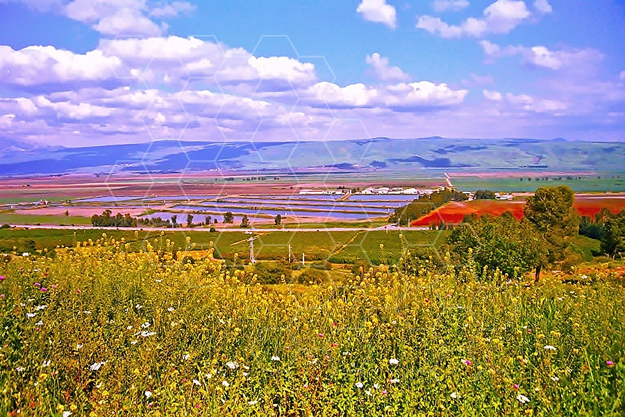 Hula Valley 011