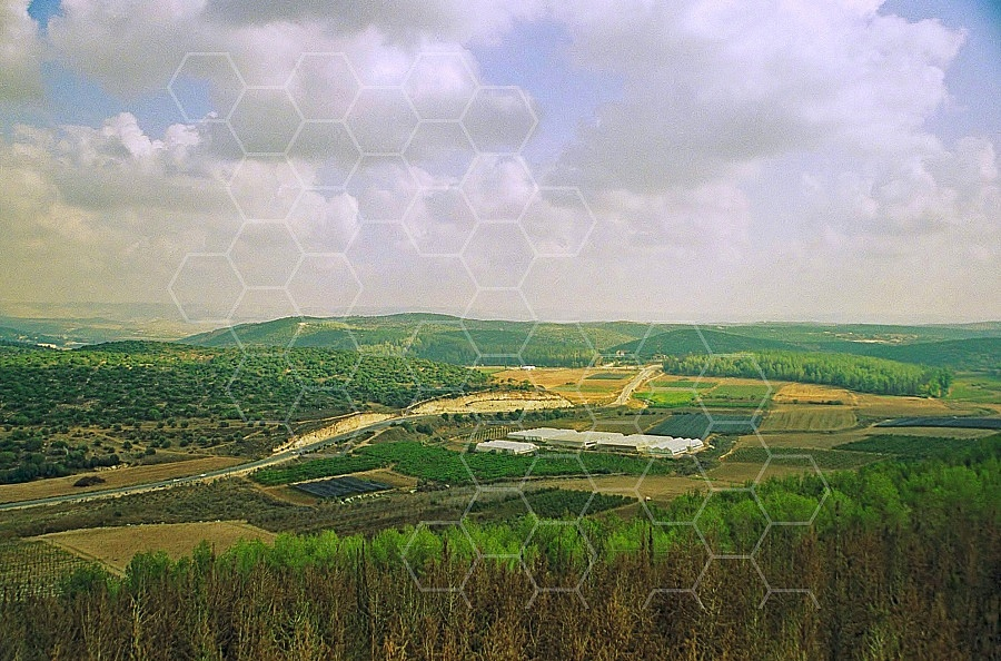 Elah Valley 0004