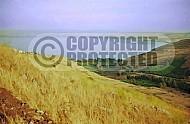Kinneret Sea of Galilee 0024