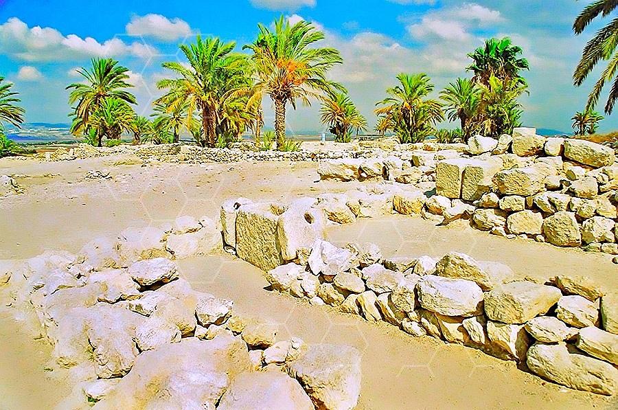 Tel Megiddo Ruins 009