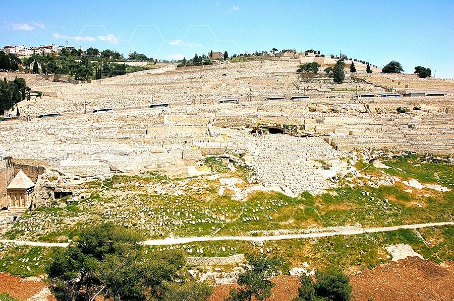 Jerusalem Mount Of Olives 010