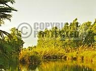 Jordan River 010a