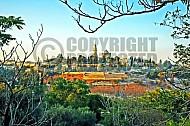 Jerusalem Mount Zion 006