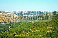 Judean Hills 015