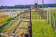 Majdanek Barbed Wire Fence 0001