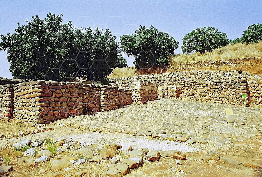 Tel Dan City Wall 003