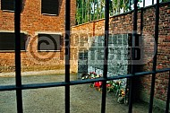 Auschwitz Execution Wall 0003