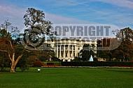 White House 0004