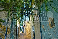 Safed 008