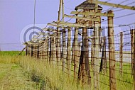 Majdanek Barbed Wire Fence 0007