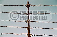 Mauthausen Barbed Wire Fence 0012
