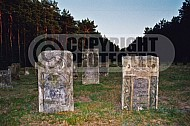 Chelmno Jewish Memorials in the Cemetery 0006