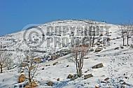 Mount Hermon 0011