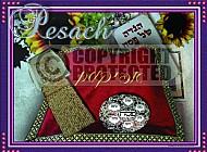 Pesach 001