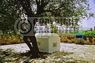 Rabbi Eliezer Ben Rabbi Yossi Haglili 0003