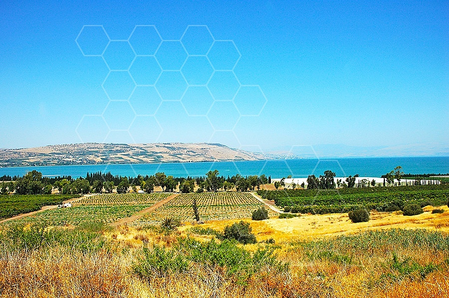 Sea Of Galilee 018