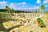 Tel Megiddo Altar 007
