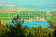 Hula Valley 002