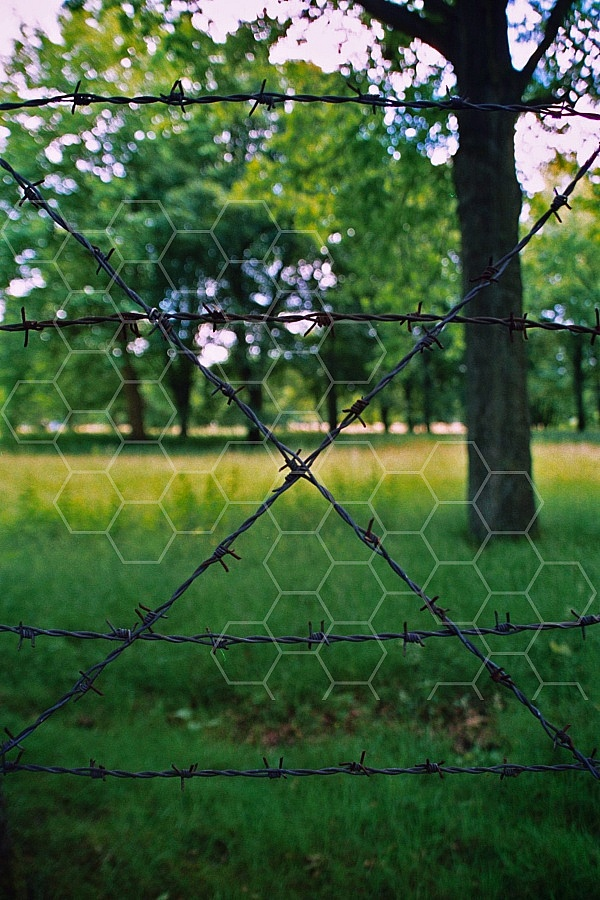 Westerbork Barbed Wire Fence 0002