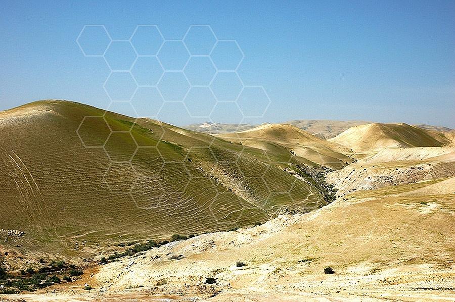 Judean Desert 021