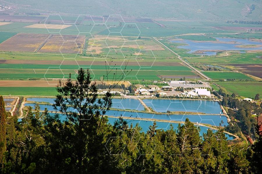 Hula Valley 0021