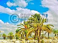 Tel Megiddo Stables 002