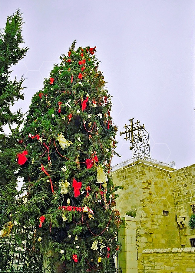 Christmas In Betlehem 012a