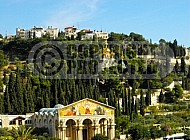 Jerusalem Mount Of Olives 022