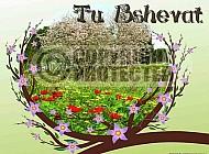 Jewish Holidays 022