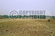 Buchenwald Grounds 0003