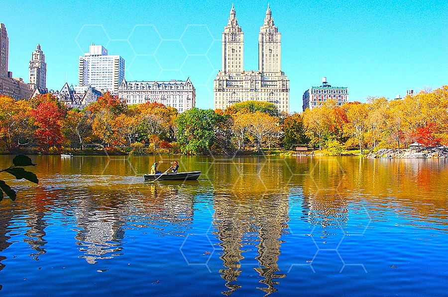 Foliage New York City Central Park 009