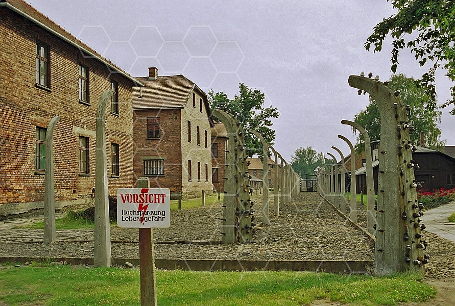Auschwitz Electrified Barbed Wire Fence 0018